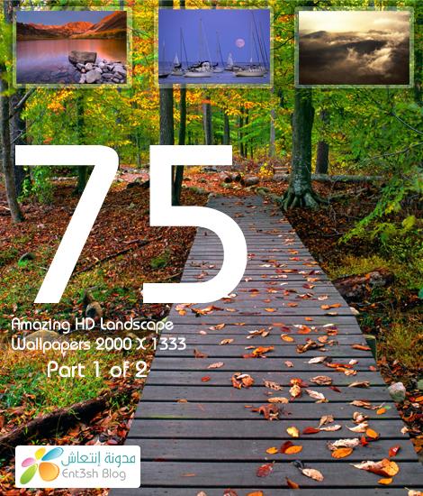 75 PICTURE PART 1